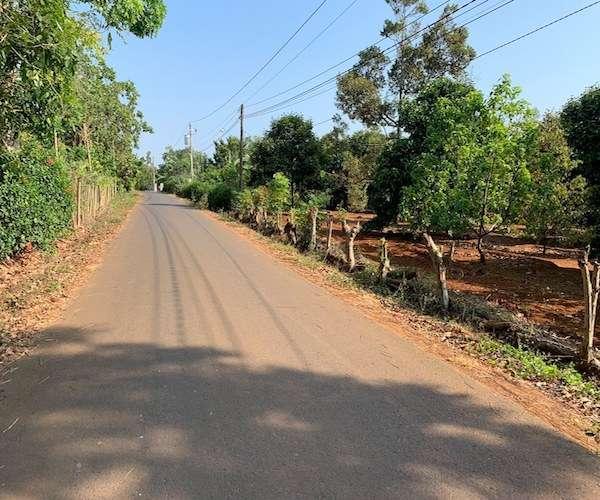 B092 - [ GÓC ĐẦU TƯ ] Bán vườn trái cây đặc sản 8000m2 ngay mặt tiền đường nhựa. có sẵn 150m thổ cư, cách QL56B chỉ 150m giá 9 tỷ tại thị trấn Kim Long, Châu Đức, BRVT