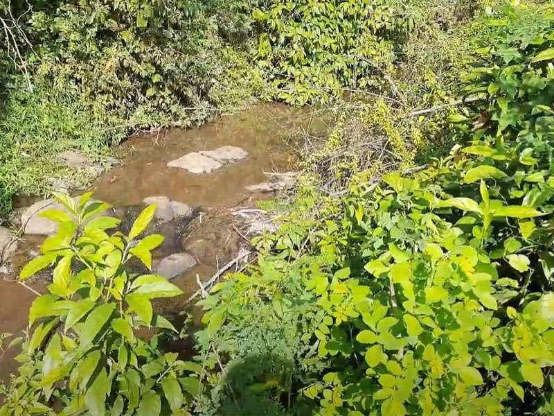 B067 - Bán nhà vườn đẹp 1.5ha có mặt tiền rộng 80m ven suối nước quanh năm, có sẵn 100m thổ cư giá tốt tại Kim Long, Châu Đức - BRVT