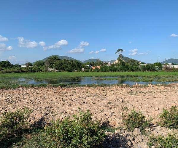 B115 - [GÓC ĐẦU TƯ ] Chủ cần bán gấp miếng đất 7070m2, cách cảng Quốc tế Cái Mép chỉ 5km, cách QL51 chỉ 500m giá 24.7 tỷ tại xã Tân Phước, Phú Mỹ, BRVT
