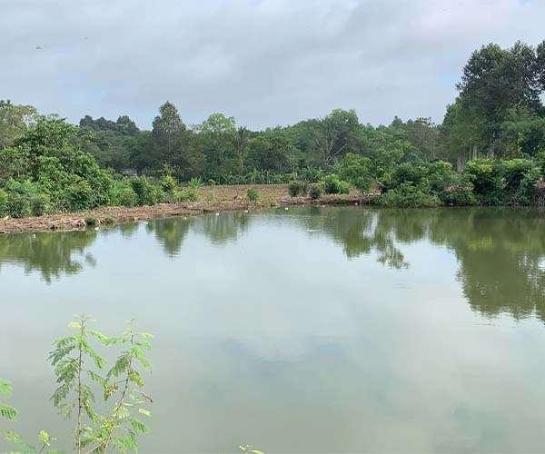 B131 - [ĐẦU TƯ VIP] Cần bán đất 5.3ha rất tiềm năng có suối bao quanh và nhiều hồ nước lớn, có sẵn 600m thổ cư, giá 29.1 tỷ là lô đất có vị trí đẹp và giá cực kỳ mềm rất hiếm trong khu vực thị trấn Kim Long, Châu Đức, BRVT
