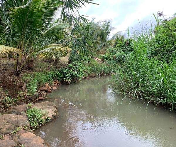 B145 - [ SIÊU PHẨM ] Bán vườn trái cây đủ loại 1ha có suối lớn bao quanh hơn 100m view cực đẹp, gần 300m mặt tiền, đất phủ hồng 100% quy hoạch đất ở cách đường chính Xà Bang - Láng Lớn chỉ 300m giá 14 tỷ tại Xà Bang, Châu Đức, BRVT