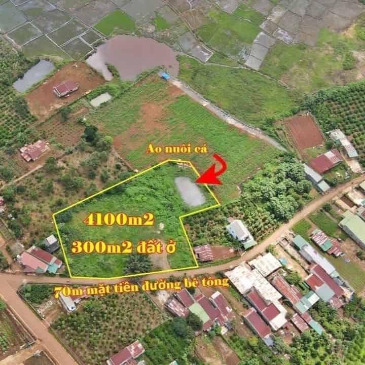 Bán 4100m2 đất gần khu du lịch thác Bobla, cách QL20 300m tại Liên Đầm, Di Linh