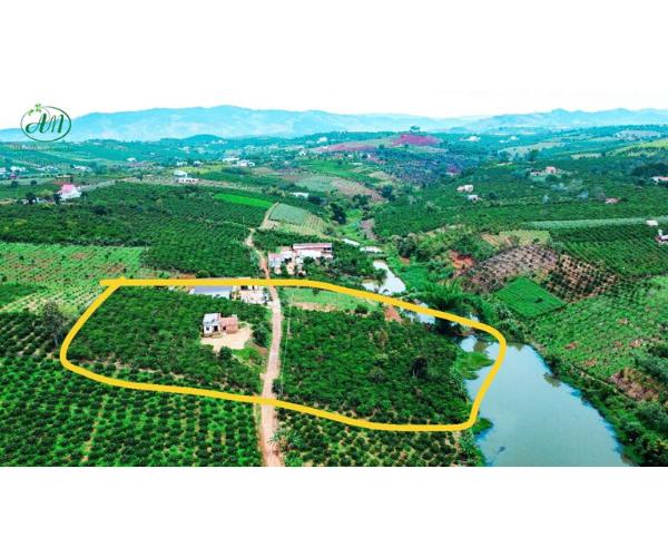 Bán các thửa đất có sẵn thổ cư, ven hồ tại vùng ven Đà Lạt, giá tốt