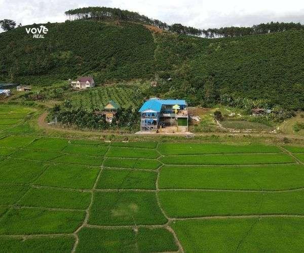 Bán đất sẵn quán cafe đẹp như tranh, S 750m2 có hồ, ruộng, đồi thông tuyệt đẹp tại Di Linh, Lâm Đồng