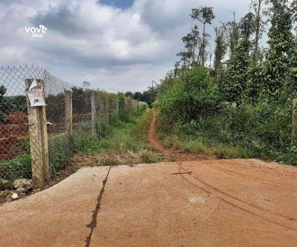 Bán miếng đất 2 mặt tiền 20648m2 tại xã Xà Bang, Châu Đức, BRVT