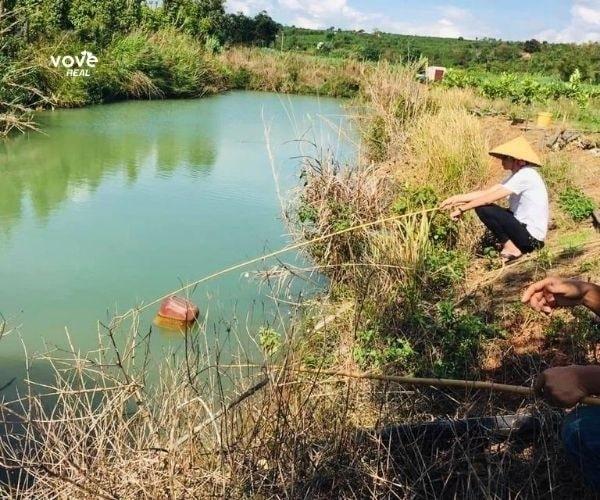 Bán miếng đất 4ha tại xã Liên Hà, Lâm Đồng có sẵn cây ăn trái, hồ cá
