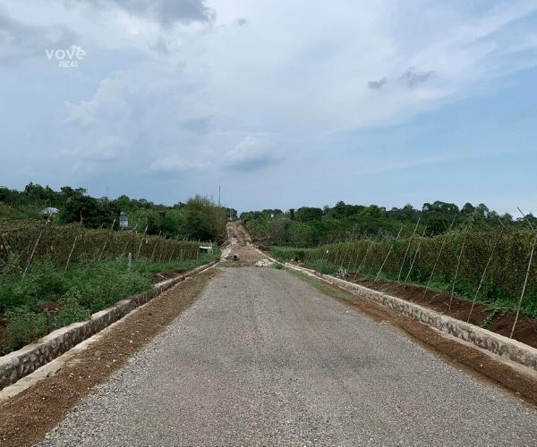 Bán miếng đất 50m mặt tiền ngay Trung tâm xã Bàu Chinh, Châu Đức, Bà Rịa Vũng Tàu