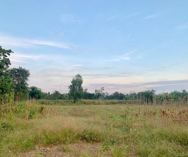 Bán miếng đất mép đường 765, Lâm San, Cẩm Mỹ