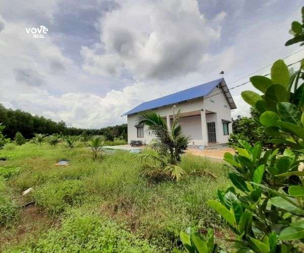 B032 - Bán nhà vườn 4000m2 ngay đường Mỹ Xuân – Ngãi Giao tại xã Láng Lớn, Châu Đức, BRVT