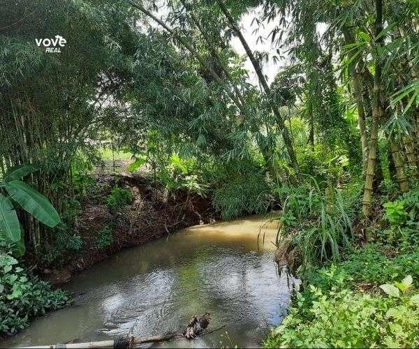 Bán vườn trái cây 2000m2 ven suối tại thị trấn Ngãi Giao, Châu Đức, BRVT