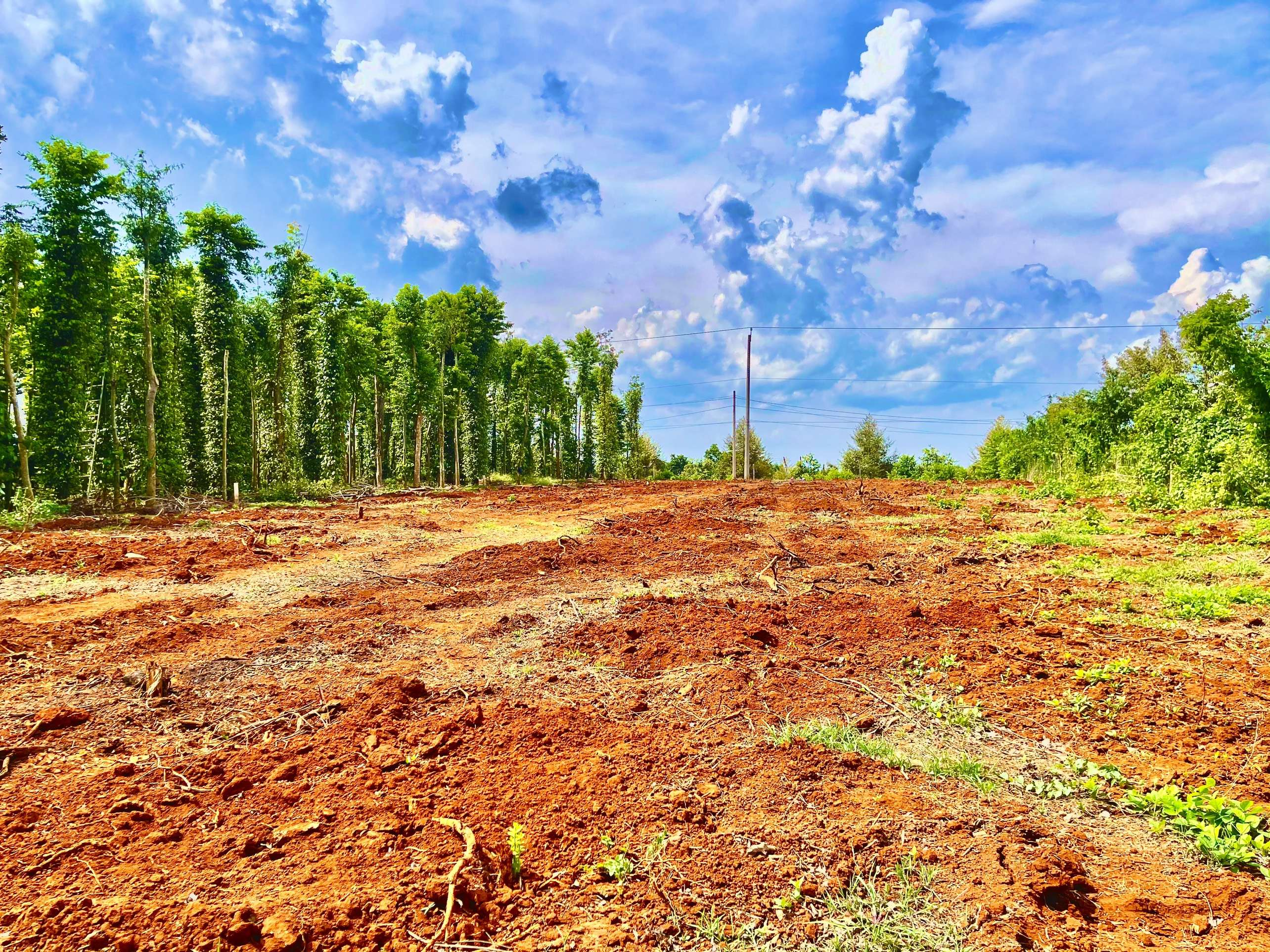 D050 - [GÓC ĐẦU TƯ ] Bán miếng đất đẹp 5884m2 ngay mặt tiền đường nhựa, cách DT765 chỉ 2km, đất nở hậu, mọi tiện nghi đầy đủ giá 3.6 tỷ tại Lâm San, Cẩm Mỹ, Đồng Nai