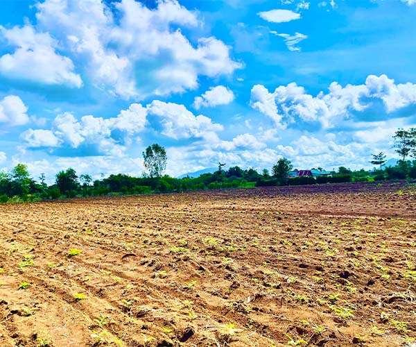 D056 - [ GÓC ĐẦU TƯ ] Bán đất vườn 6413m2, có 99m mặt tiền, vuông vức, vị trí đẹp cách DT765 chỉ 700m giá 4.23 tỷ tại Xuân Tây, Cẩm Mỹ, Đồng Nai