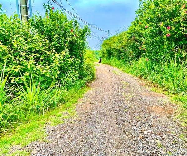 D062 - [GÓC ĐẦU TƯ ] Bán đất 3000m2 vị trí đẹp 2 mặt tiền rộng đến 146m, có sẵn thổ cư, cách đường liên xã chỉ 500m giá 2.55 tỷ tại xã Bảo Bình, Cẩm Mỹ, Đồng Nai