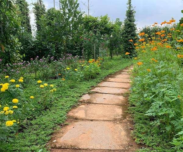D075 - Bán khu vườn view nghỉ dưỡng hoàn thiện 7770m2, nhiều loại cây ăn quả, vườn hoa đan xen các khu tiểu cảnh tuyệt đẹp, vị trí thuận tiện cách DT765, UBND chỉ 800m giá 4,04 tỷ tại Lâm San, Cẩm Mỹ, Đồng Nai