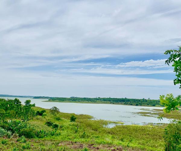 Bán vườn trái cây khoảng 25 loại ven hồ Sông Ray, Cẩm Mỹ, Đồng Nai